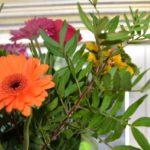 Flowers in the garden of Turn O' Tide