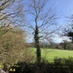 Apple Retreat Garden Views